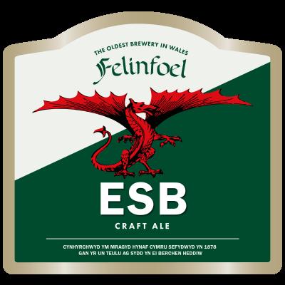 Felinfoel ESB